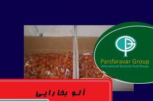 قیمت آلو بخارا در مشهد